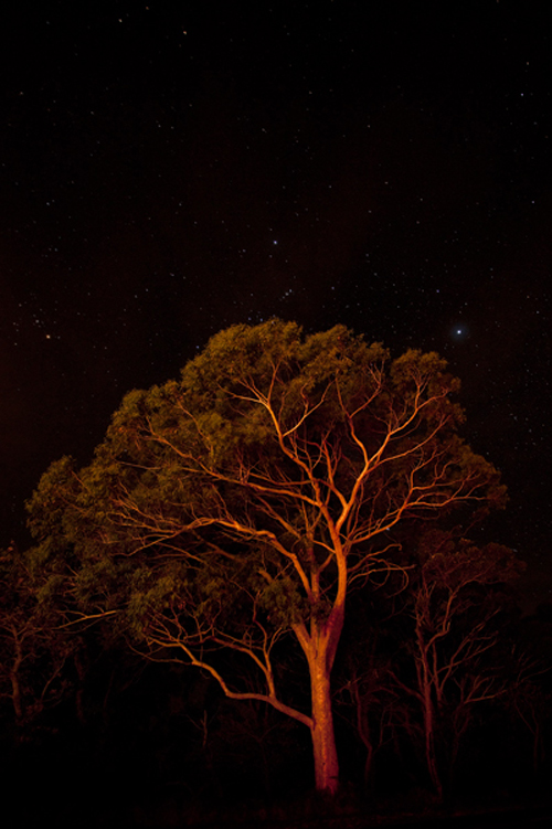 stradbroke_starry_night.jpg