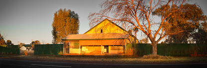 Dappled_Light.jpg