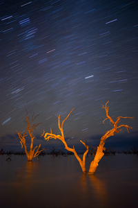 Menindee_Trails900.jpg