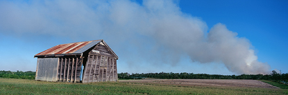 Smoke_and_Shack_NSW.jpg