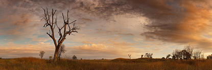 Outback_Sunrise500.jpg
